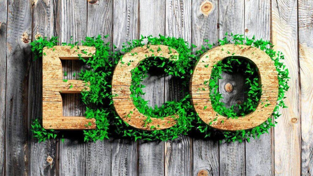 Экологичные привычки для вашего дома
